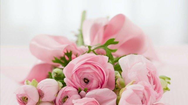 オリックスカーシェア女性限定お誕生日割引き